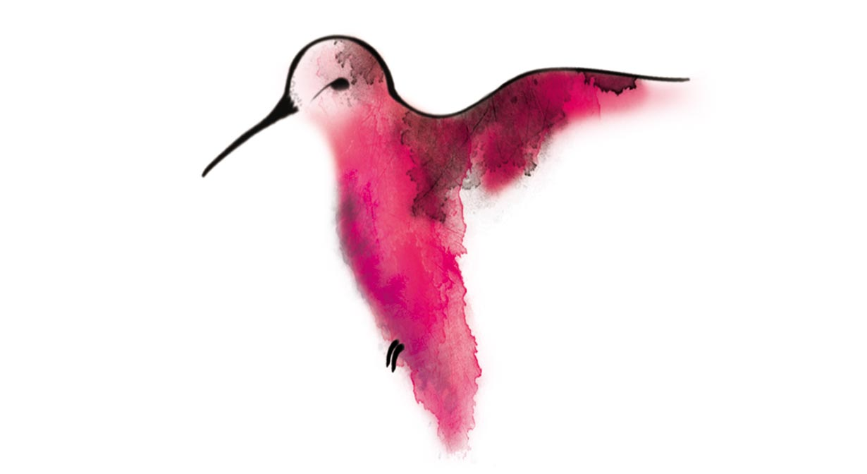 Temporary Tattoo - Hummingbird in Watercolor - Temporary Tattoos ...
