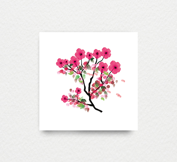 Watercolor Cherry Blossoms Inktion